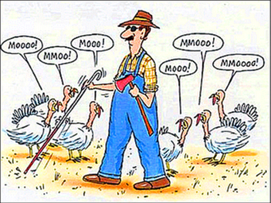 Funny-Thanksgiving-Picture
