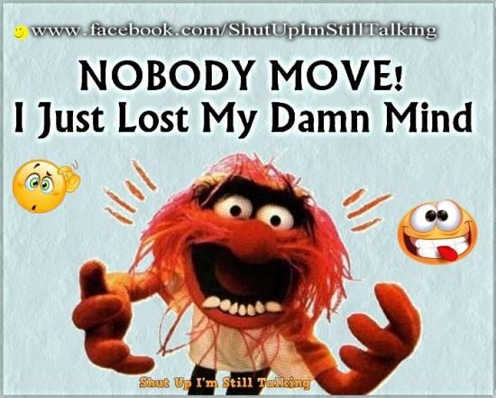 nobody move!